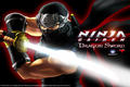 "Nintendo DS - ""Ninja Gaiden: Dragon Sword - Wallpaper""-Screenshot"